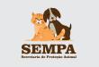 Secretaria de Proteção Animal volta atender com antigo número de telefone
